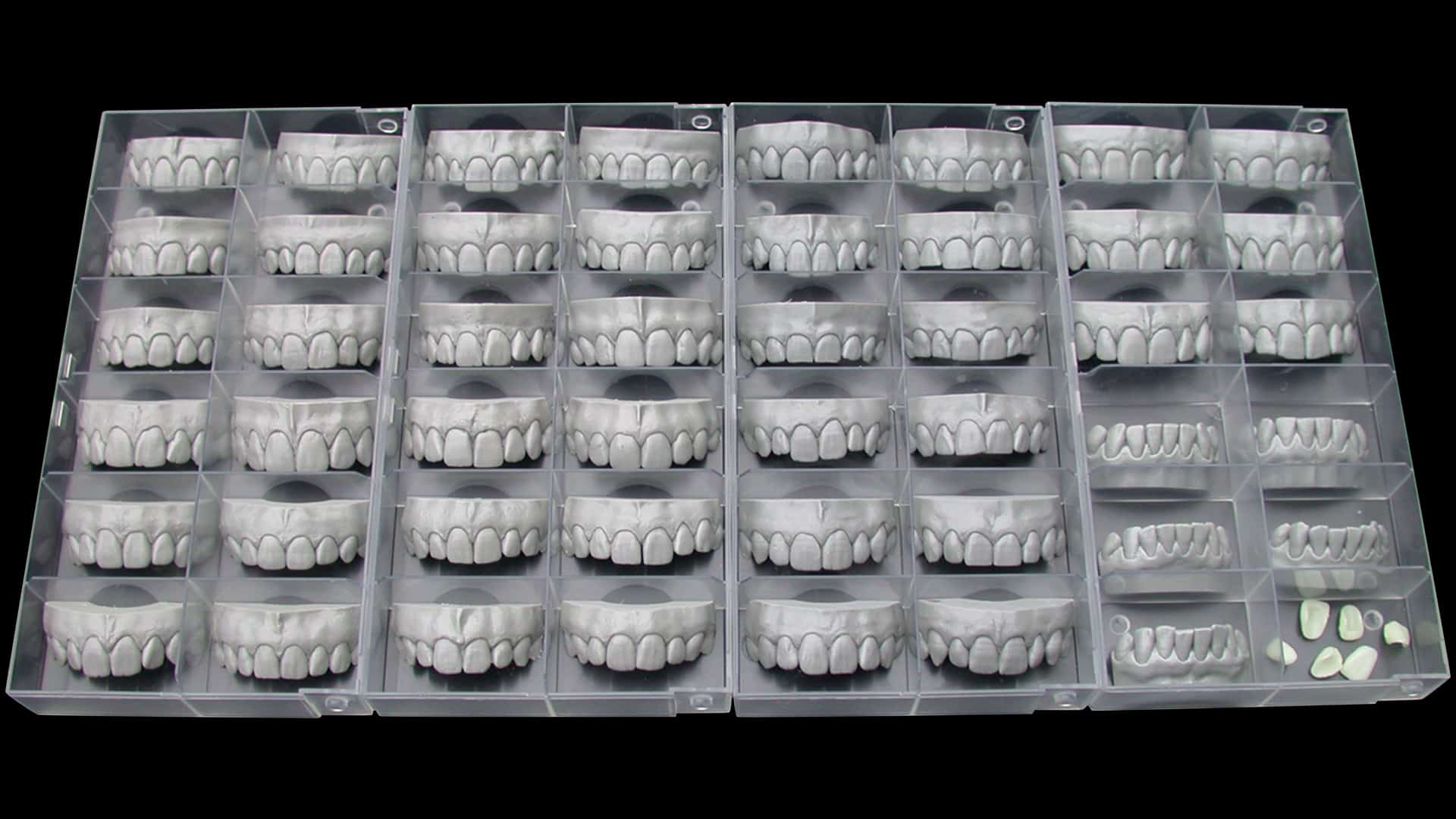 Tooth Libraray Anteriors Models