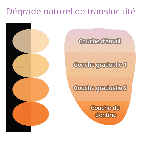 stml-concept-of-color-and-translucency