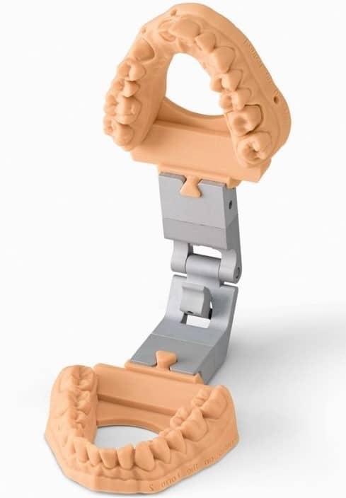 dental-model_2x 1